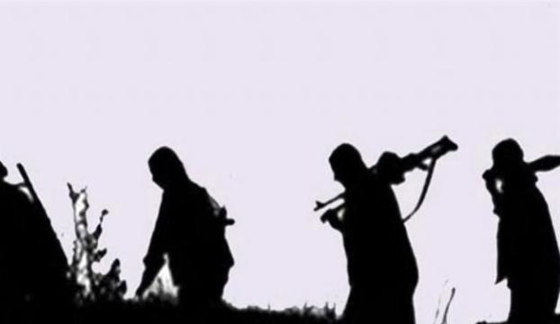 Kamplarından kaçan PKKlılar teslim oldu