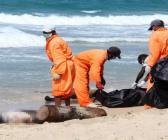 Libya'da sahilden ceset topladılar