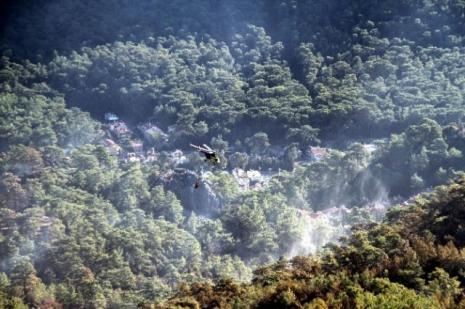 Marmaristeki yangının kaybı açıklandı