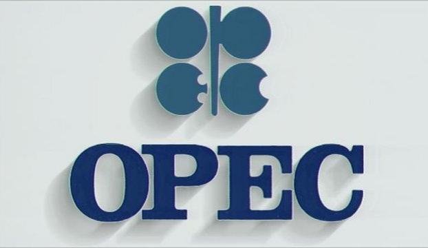 Rusyadan OPEC kararı açıklaması